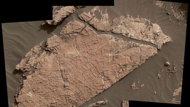 NASA's Curiosity rover found a weirdly salty 'ancient oasis' on Mars