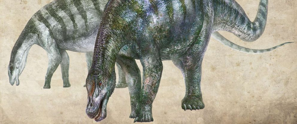 PHOTO: An artists rendering of Lingwulong shenqi, a newly discovered dinosaur unearthed in northwestern China, appears in this image provided July 24, 2018.