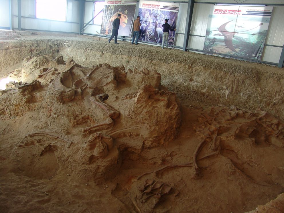 PHOTO: One of the four quarries producing fossils of Lingwulong, a newly discovered dinosaur unearthed in northwestern China is seen in this image provided July 24, 2018.