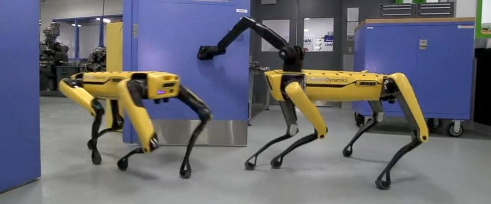 PHOTO: The SpotMini robot made by Boston Dynamics opens a door using an arm attachment in YouTube video.