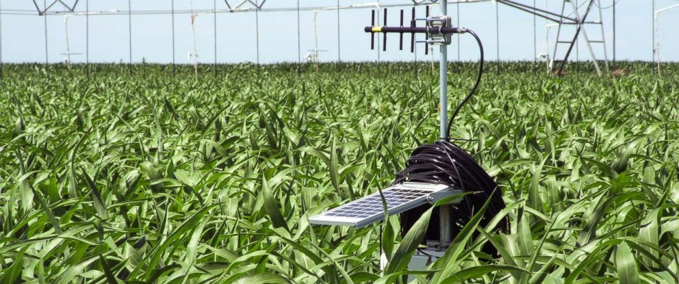 PHOTO: Solar-powered soil water station in corn field helps to prevent over- and under-irrigation of the variable-rate irrigation system.