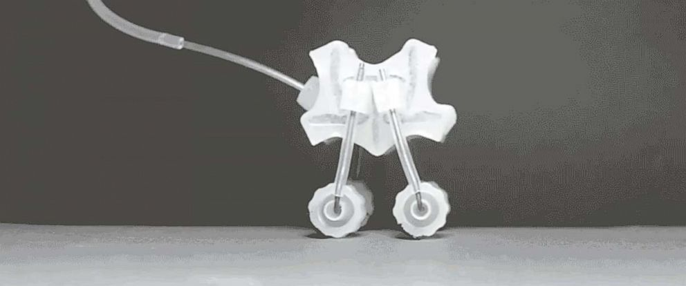 "PHOTO: A robot walker driven by a soft ""motor"" consists of expanding and contracting cells"