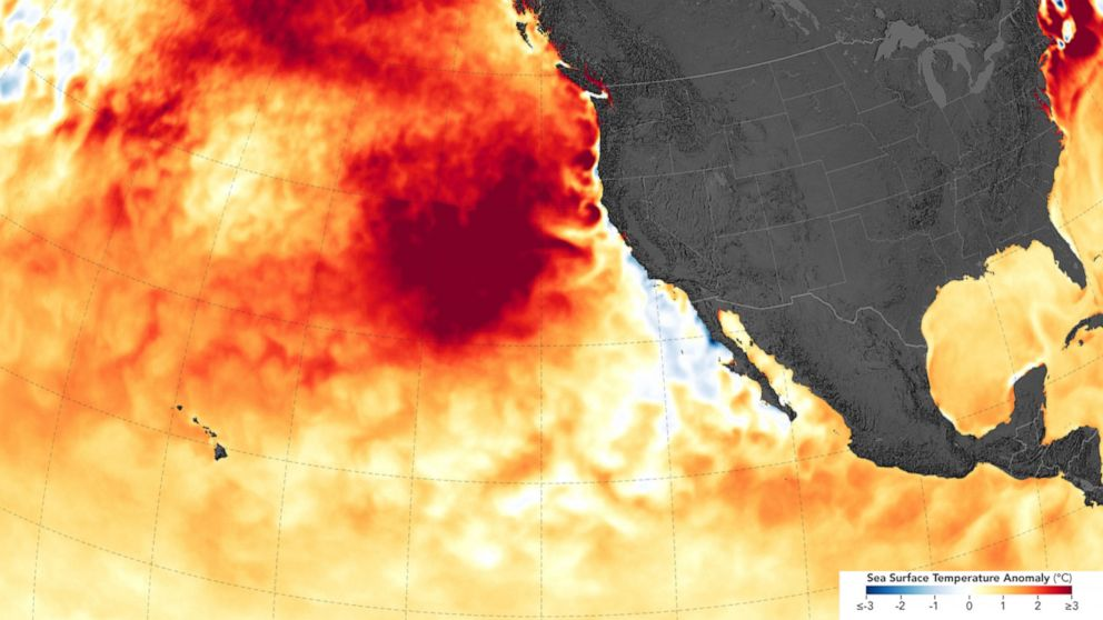 Severe marine heat waves linked to human-caused warming