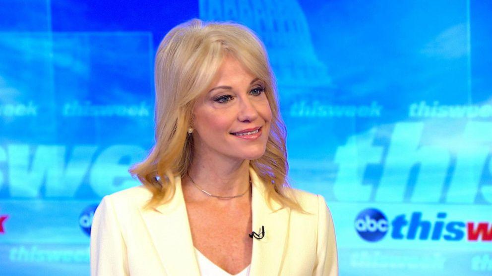 'Donald Trump won, we didn't need WikiLeaks, we had Wisconsin': Kellyanne Conway