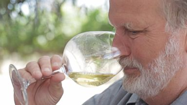 'PHOTO: David Graves, Co-Founder of Saintsbury Vineyard and Winery in Napa, California is seen here.' from the web at 'https://s.abcnews.com/images/Travel/ABC_wine_03_as_160803_1_16x9t_384.jpg'