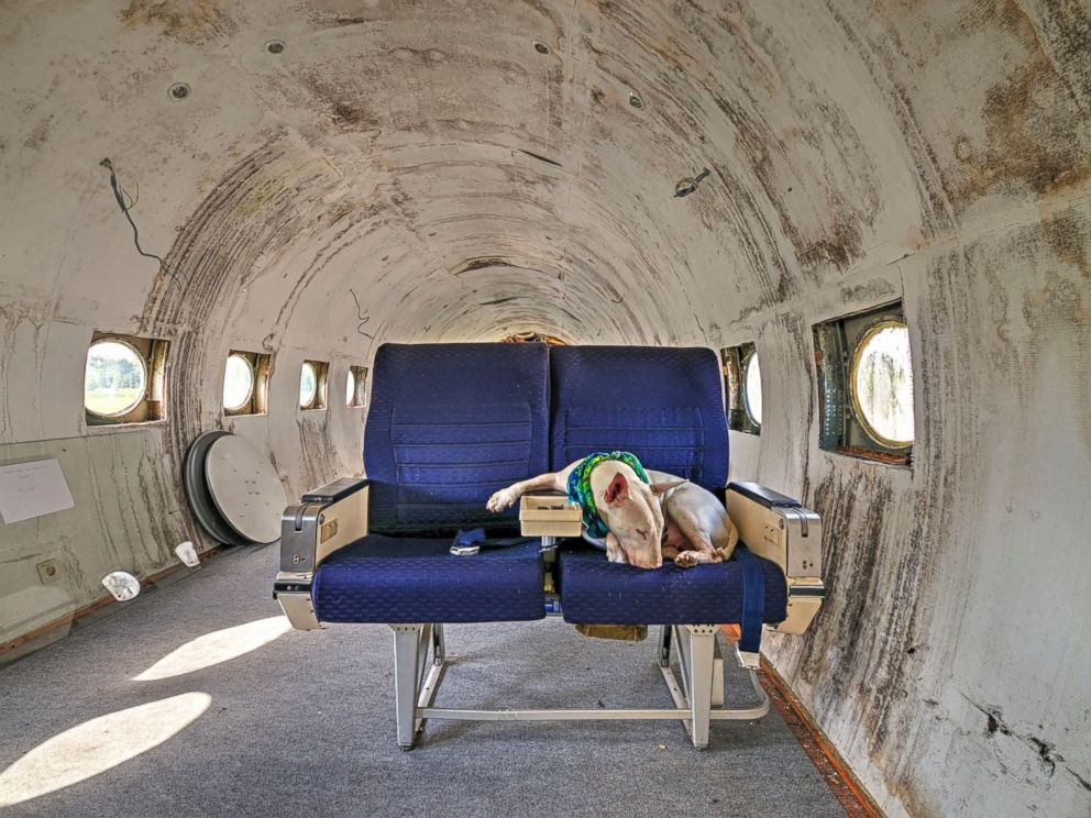 PHOTO: Claire pictured in an abandoned airplane in Belgium.