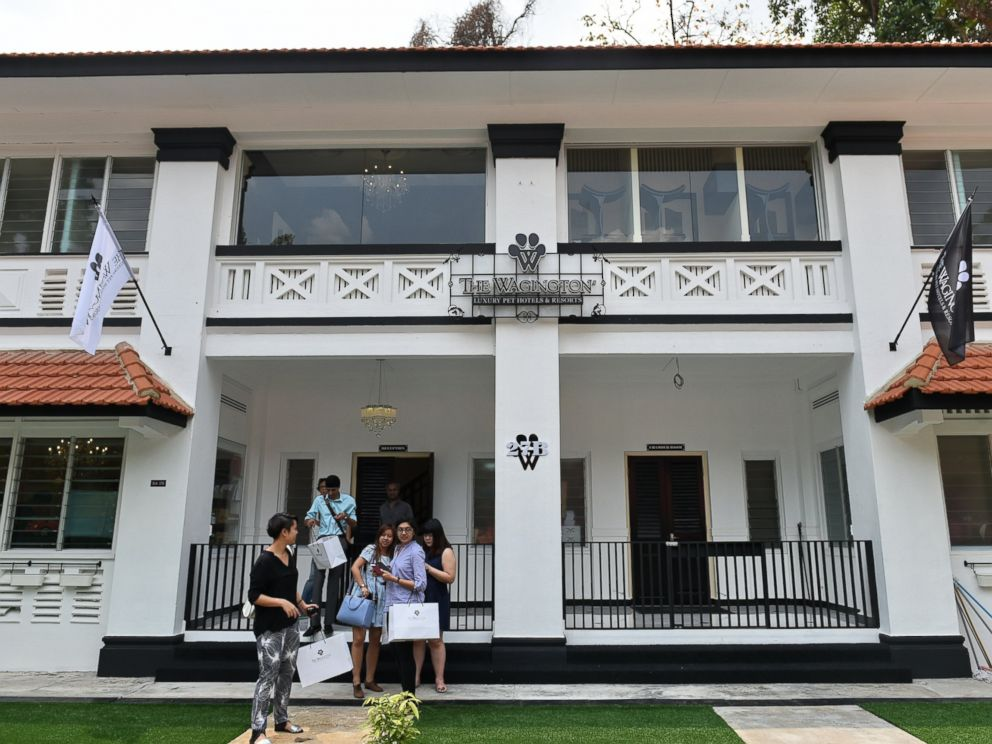 PHOTO: This general view shows the exterior of the Wagington luxury pet hotel in Singapore on Nov. 4, 2014.