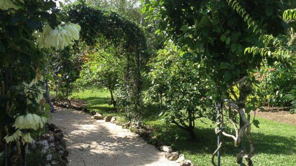 PHOTO: Elizabeth II Botanic Park, Cayman Islands.