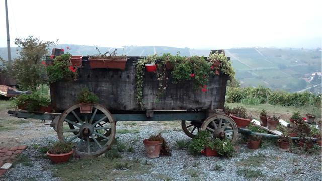 PHOTO:Hillside Overlook, Acqui Terme