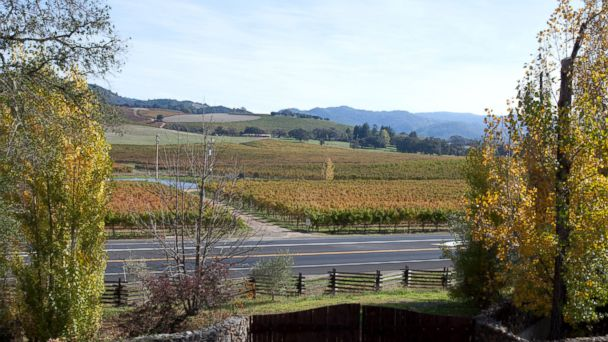 PHOTO: Sonoma Valley, Calif.