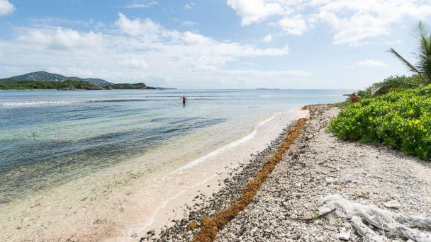 PHOTO: Virgin Islands Campground, Water Island.