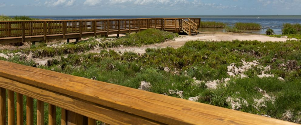 In this Aug. 7, 2019 photo, the newly renovated boardwalk at the Aransas National Wildlife Refuge in Austwell, Texas, connects the observation towers and the Big Tree Trail along the San Antonio Bay. (Emree Weaver/The Victoria Advocate via AP)