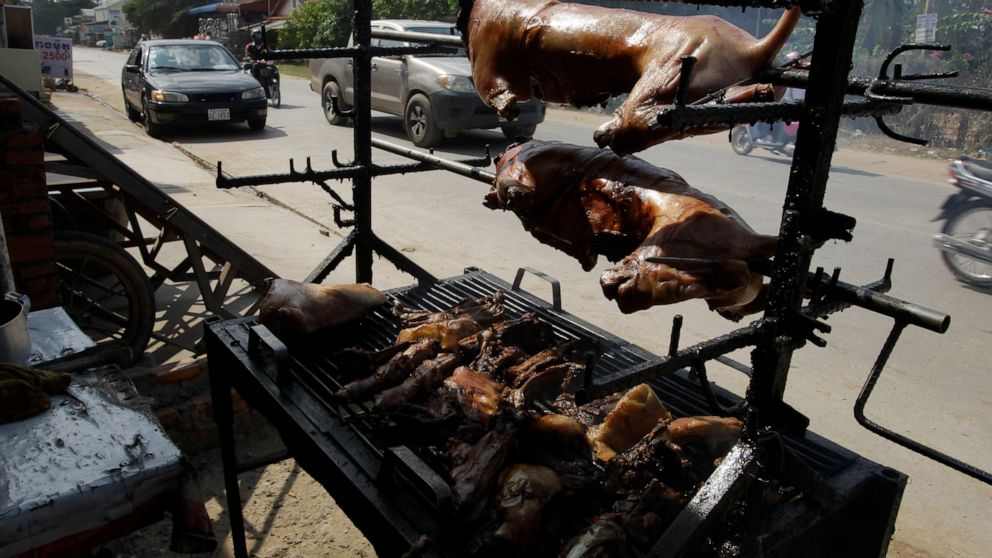 Cambodian province well-known for Angkor Wat bans canine meat commerce thumbnail
