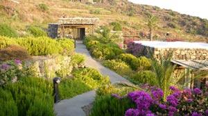 A Trip to Paradise? Italian Island of Pantelleria
