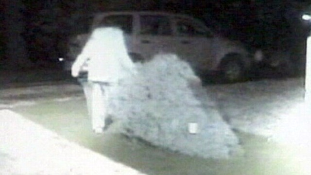 VIDEO: Surveillance footage shows a woman stealing trees from a Boy Scout lot.