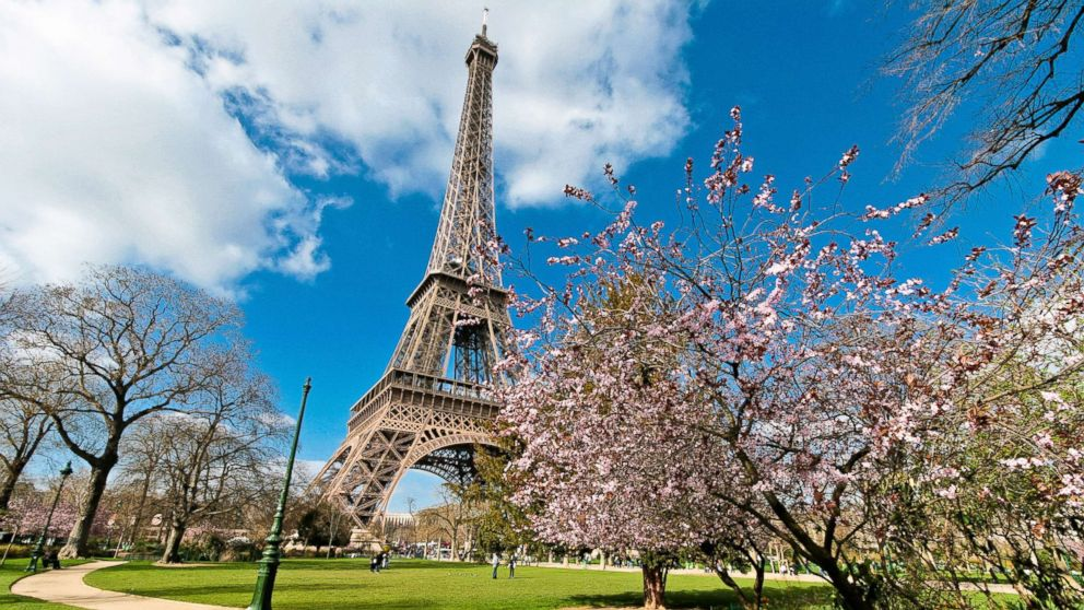 The Eiffel Tower from the Champs de Mars park in spring time with cherry blossom, in this undated stock photo, in Paris.