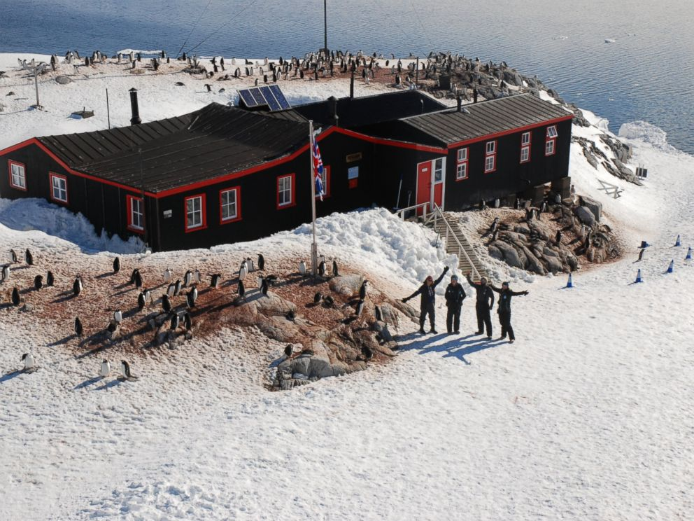 Antarctica 'Penguin Post Office' Job Attracts Record Number
