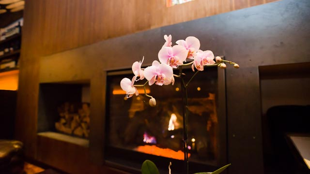PHOTO: Antica Pesa Fireplace