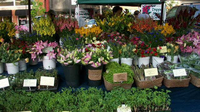 PHOTO: The Fayetteville Farmers Market in Arkansas.