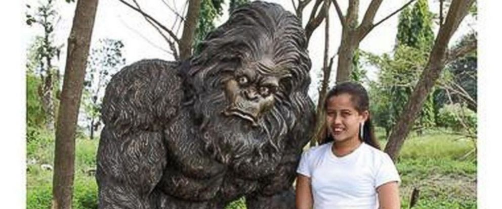 PHOTO: Bigfoot Garden Yeti Statues Are Available In A Range Of Sizes On  SkyMall.