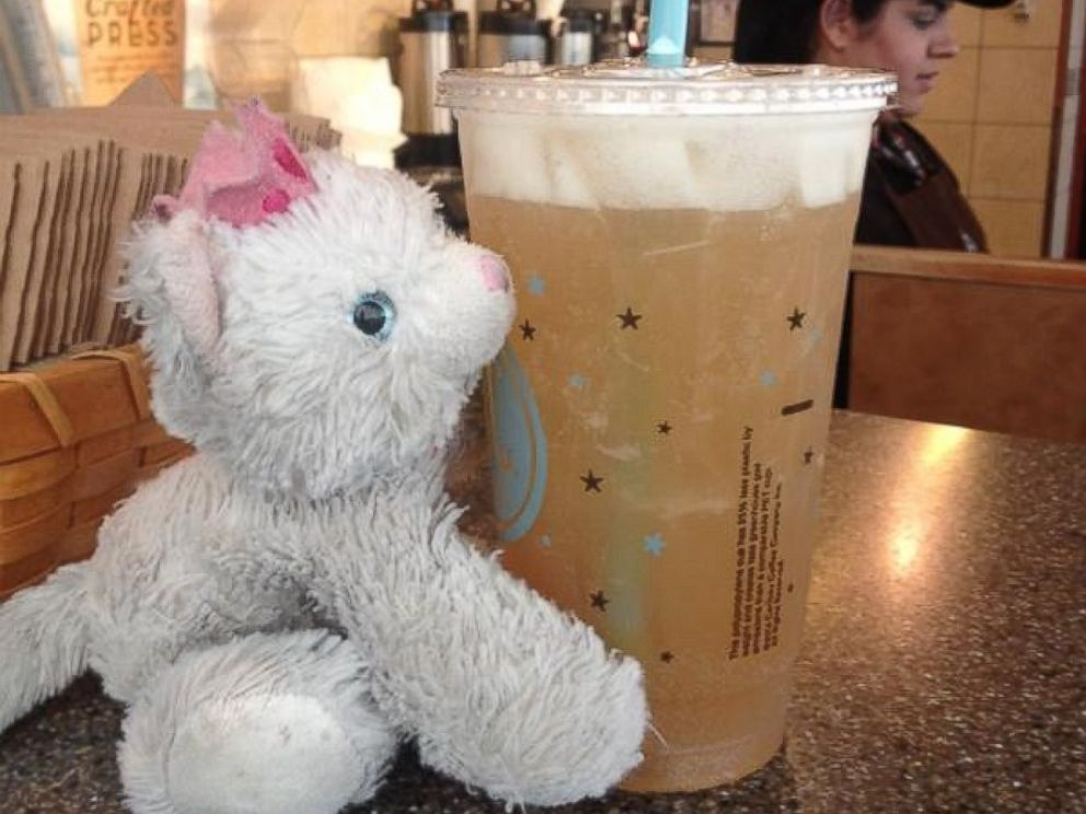 PHOTO: Princess Kitty visited one of the coffee concessions in the main terminal of Denver International Airport.