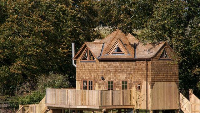 PHOTO: The Treehouse, Taunton, UK