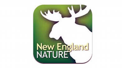 PHOTO: New travel app from the iTunes store; New England Nature.