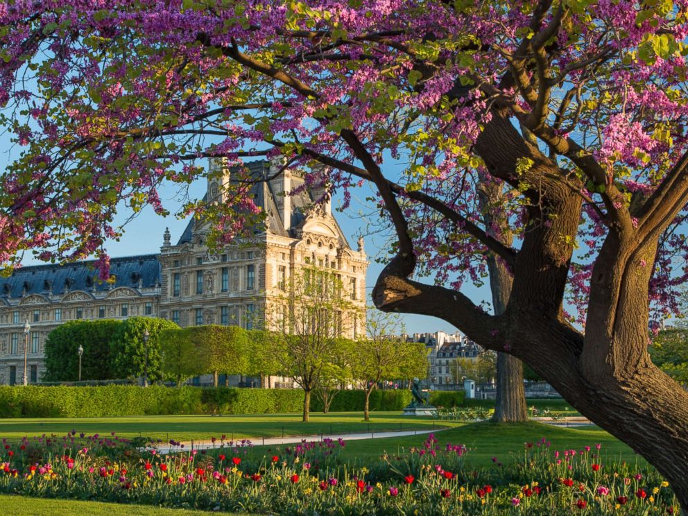 PHOTO: This undated stock photo shows the Tuileries Garden, in the spring, in Paris.