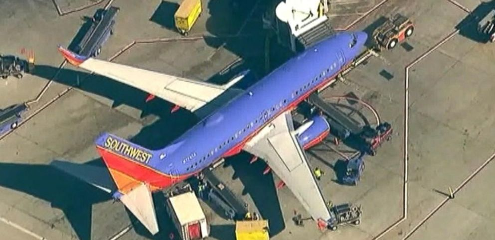 VIDEO: The plane made an emergency landing in Los Angeles with an extra passenger on board.