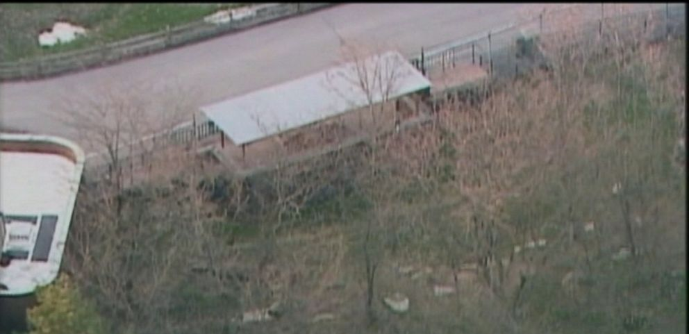 VIDEO: Cleveland Zoo officials say they will seek child endangerment charges against the boys parents.