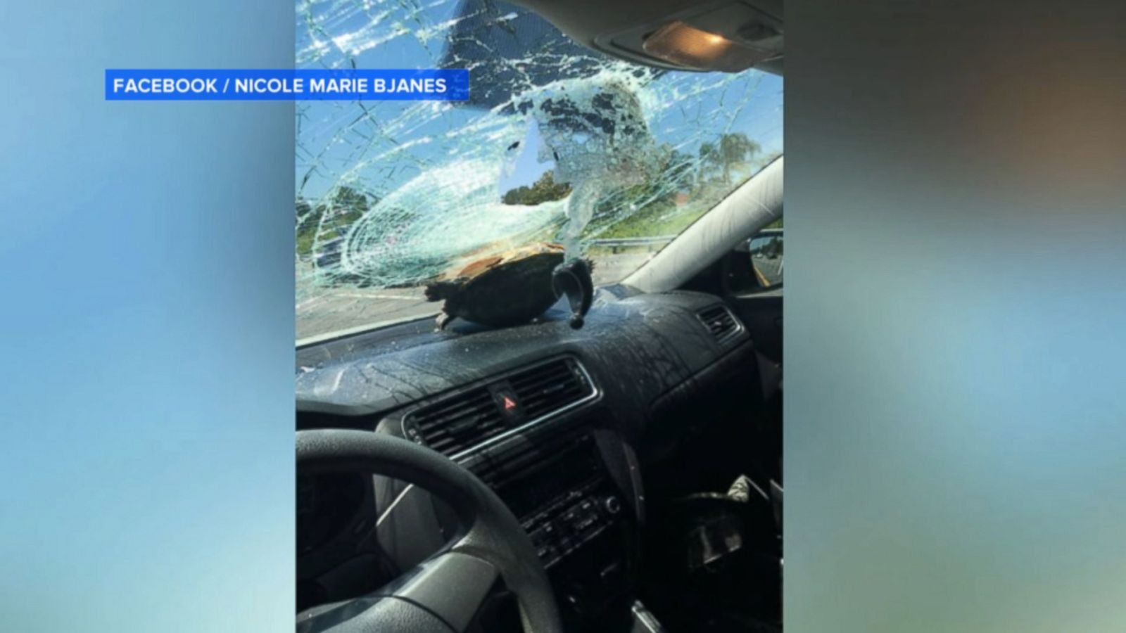 is it illegal to drive with a cracked windshield in north carolina