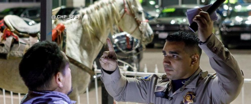 """VIDEO: The California Highway Patrol sent out an unusual message on Twitter over the weekend: """"No, you may not ride your horse on the freeway."""""""