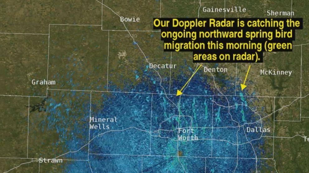 Weather Radar Picks Up Widespread Bird Migration Video Abc News