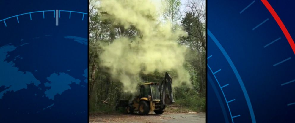 VIDEO: Video of an impressive cloud of pollen is sure to spark a chorus of sneezes among allergy sufferers everywhere.
