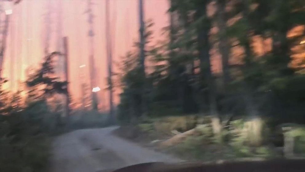 Video shows father, son driving through forest fire in escape from mountain