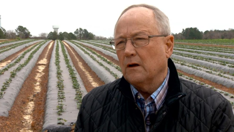 VIDEO: South Georgia farmer Bill Brim on the government shutdown