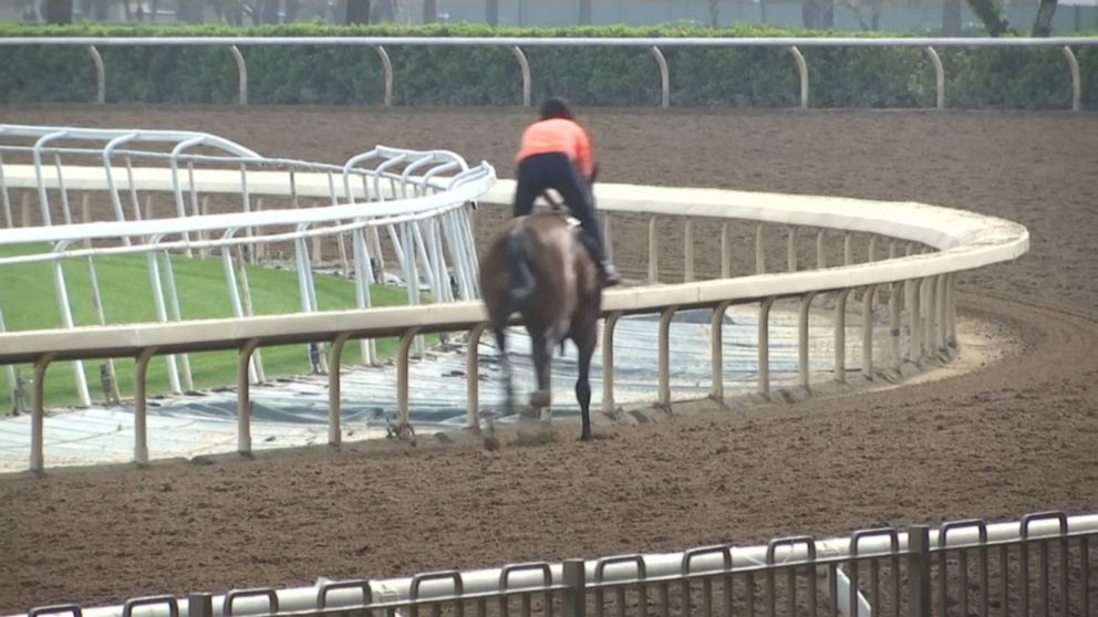 Santa Anita racetrack loses 2 more horses, upping death toll to 25