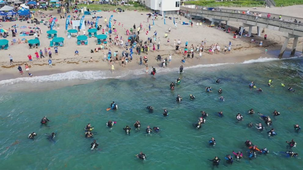 Scuba divers set world record for largest underwater cleanup