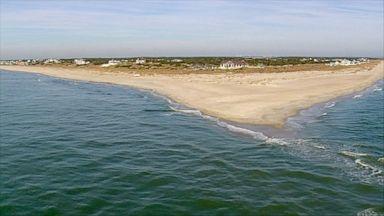 8 Year Old Bitten By Shark Off North Carolina Coast Video