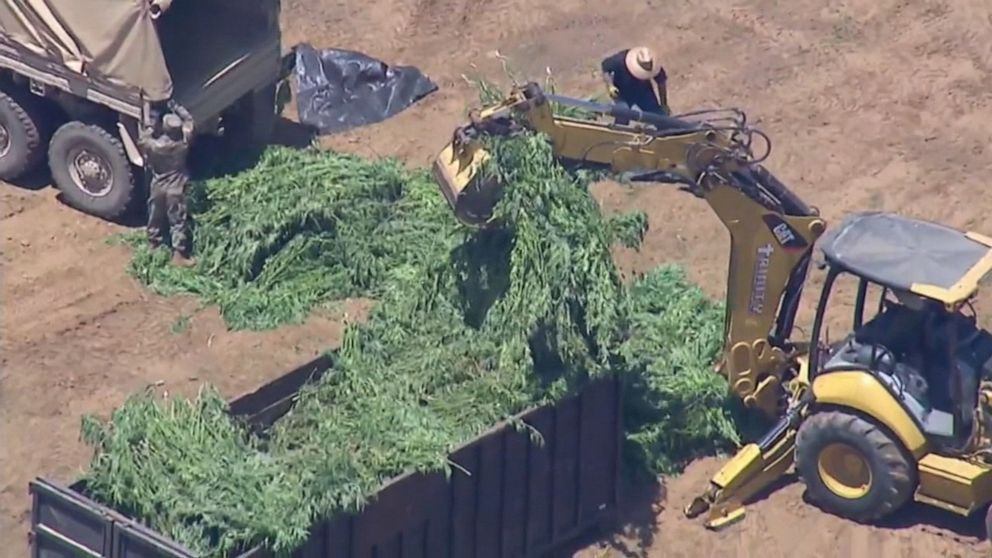 California authorities find nearly 15 tons of illegally