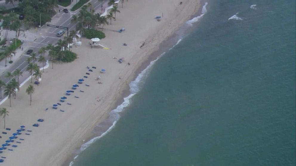 Boy escapes apparent shark attack with 'very minor' injuries