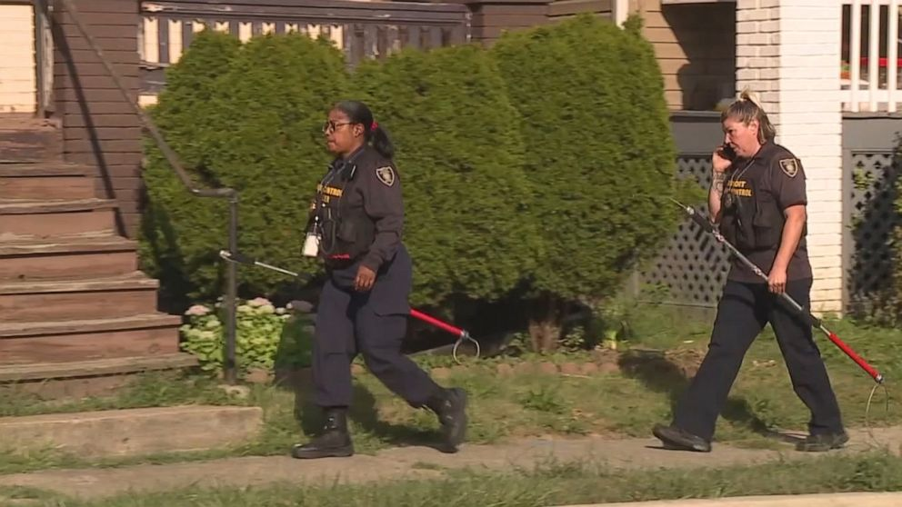 Dog owner arrested after girl, 9, mauled to death by 3 dogs in Detroit