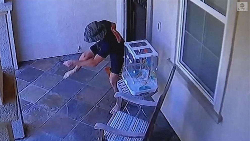 Rattlesnake bites 19-year-old outside California home