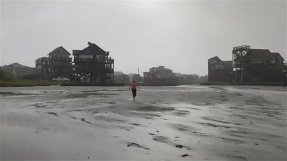 WATCH: Hurricane leaves fish stranded in shallow water