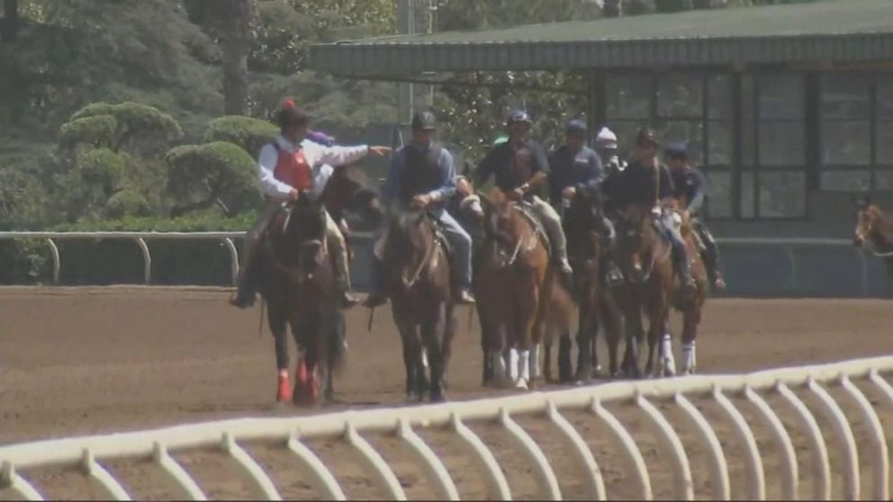 2 horses dead, 1 injured after racing day at Del Mar racetrack in Southern California