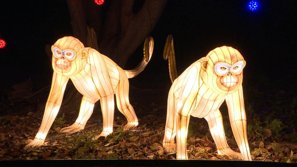 Smithsonian debuts ZooLights