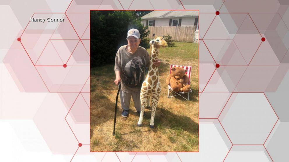 86-year-old woman creates stuffed animal zoo on front lawn