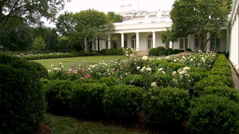 First Lady Melania Trump Unveils White House Rose Garden Restoration Abc News