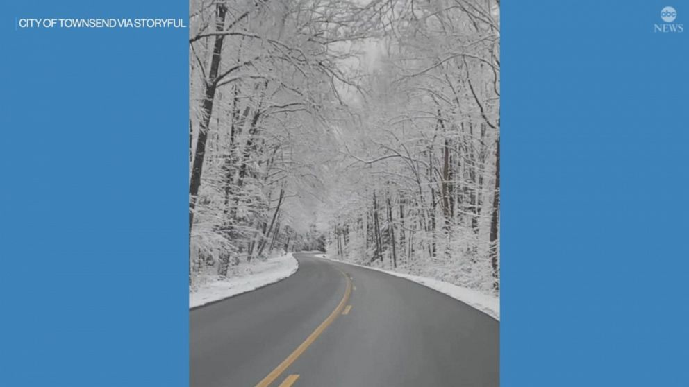 Snowfall covers woods in Great Smoky Mountains