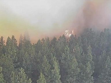 WATCH:  Timelapse: Wildfire cam captures moment it's engulfed by flames